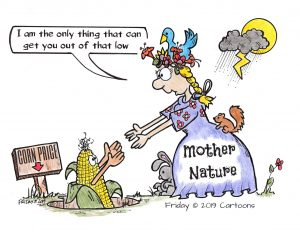 Mother Knows Best! | Friday©Cartoons